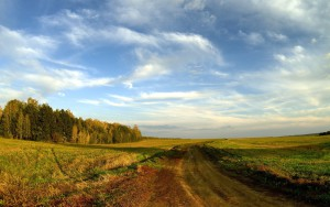 road_field_sky_clouds_blue_country_open_spaces_trees_horizon_landscape_61181_2560x1600